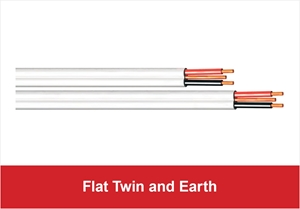 Picture for category Flat Twin and Earth