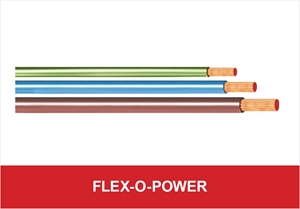 Picture for category Flex-o-Power