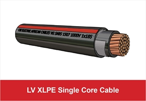 Picture for category LV XLPE Single Core Cable