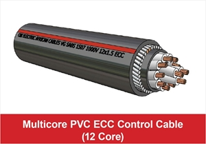 Picture for category Multicore ECC Control (12 Core)