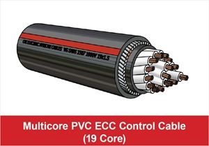 Picture for category Multicore ECC Control (19 Core)