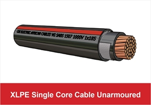 Picture for category XLPE Single Core Unarmoured