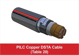 Picture for category PILC Copper DSTA Cable (Table 20)
