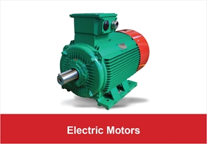 Picture for category Electric Motors