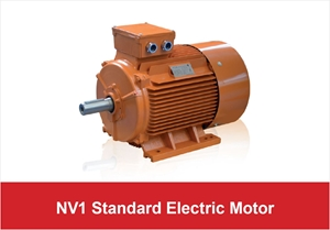 Picture for category NV1 Standard Electric Motor