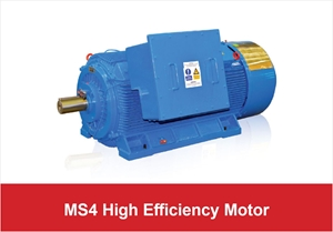 Picture for category MS4 High Efficiency Motor