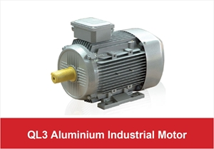 Picture for category QL3 Aluminium Industrial Motor