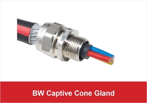 Picture for category BW Captive Cone Gland