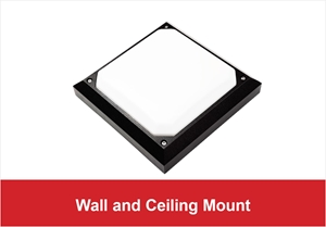 Picture for category Wall and Ceiling Mount