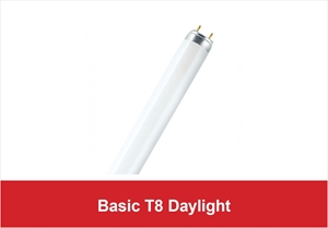 Picture for category Basic T8 Daylight