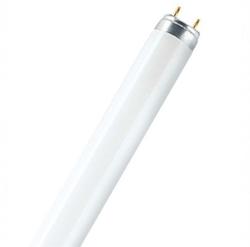 Picture of Lumilux T8 (36W)