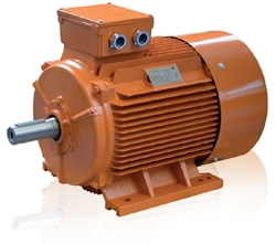 Picture of NV1 Standard Electric Motor (0.37-160kW)