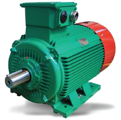 Actom Electrical Products Ls6 Premium Efficiency Motor