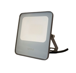 Picture of LED Flood Light Ecomax II (30W)